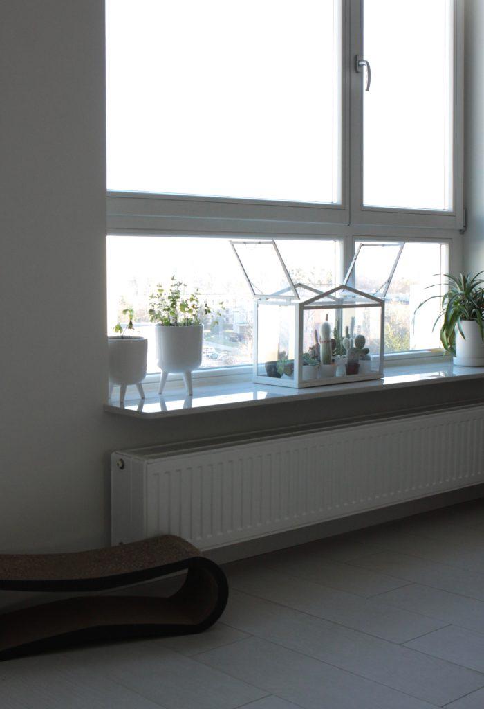 okno w domu